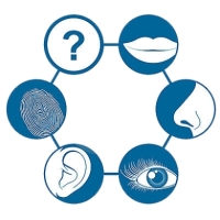 Como utilizar os 5 sentidos no processo da venda?